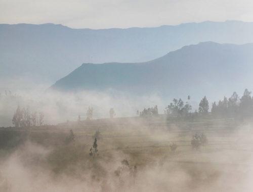 Nebel über hügeligem Land